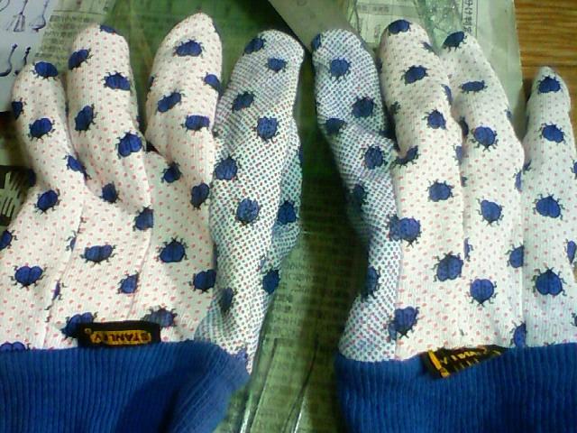 bug's glove